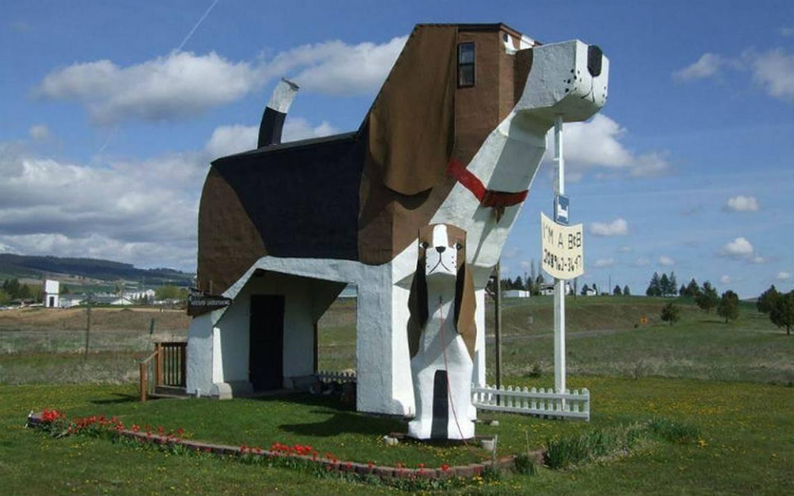 Hotel-curioso-dogbarkpark.jpg