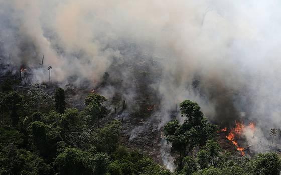 Resultado de imagen para El Pantanal, el mayor humedal del planeta, también arde en Brasil
