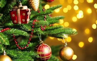 Como surgio el arbol de navidad