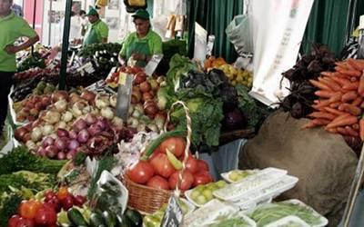 Resultado de imagen de productos organicos mazatlan