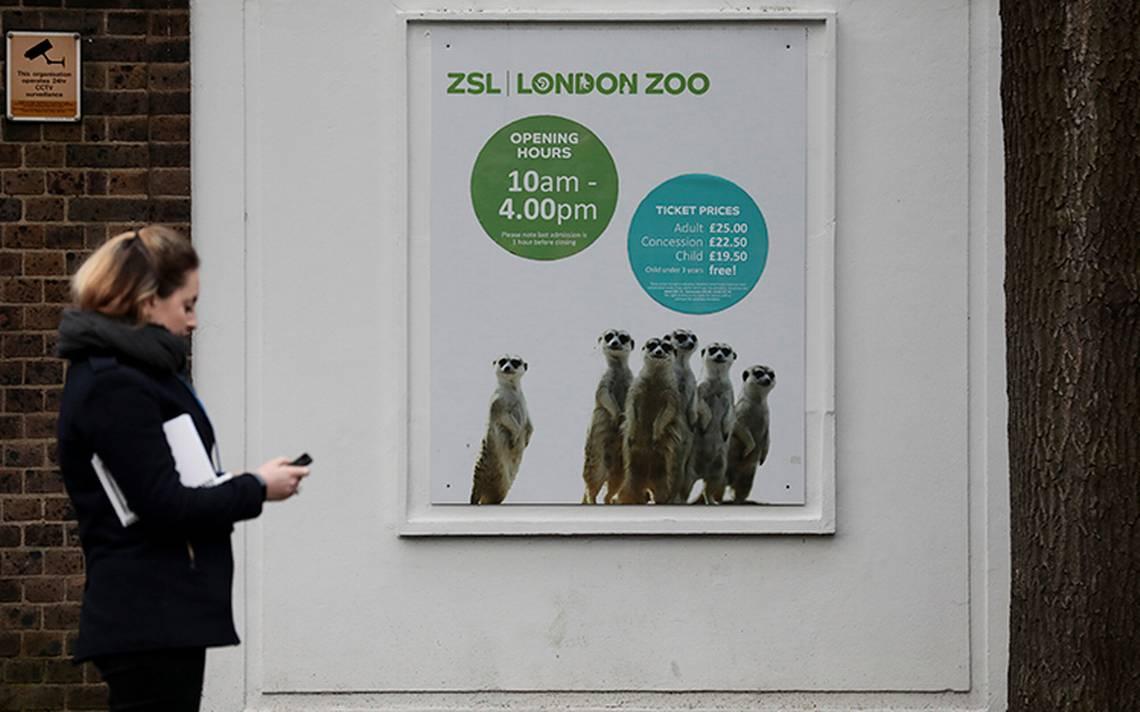 zoologico-londres-1.jpg