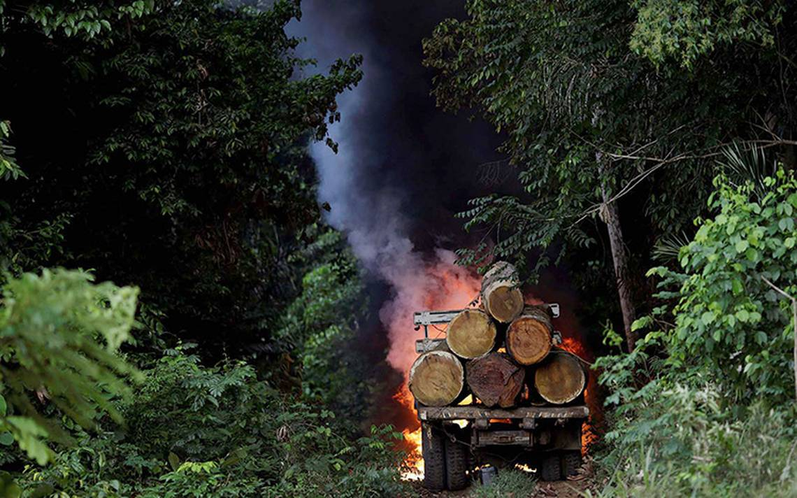 Deforestación, el cáncer que con los años devora la Amazonia