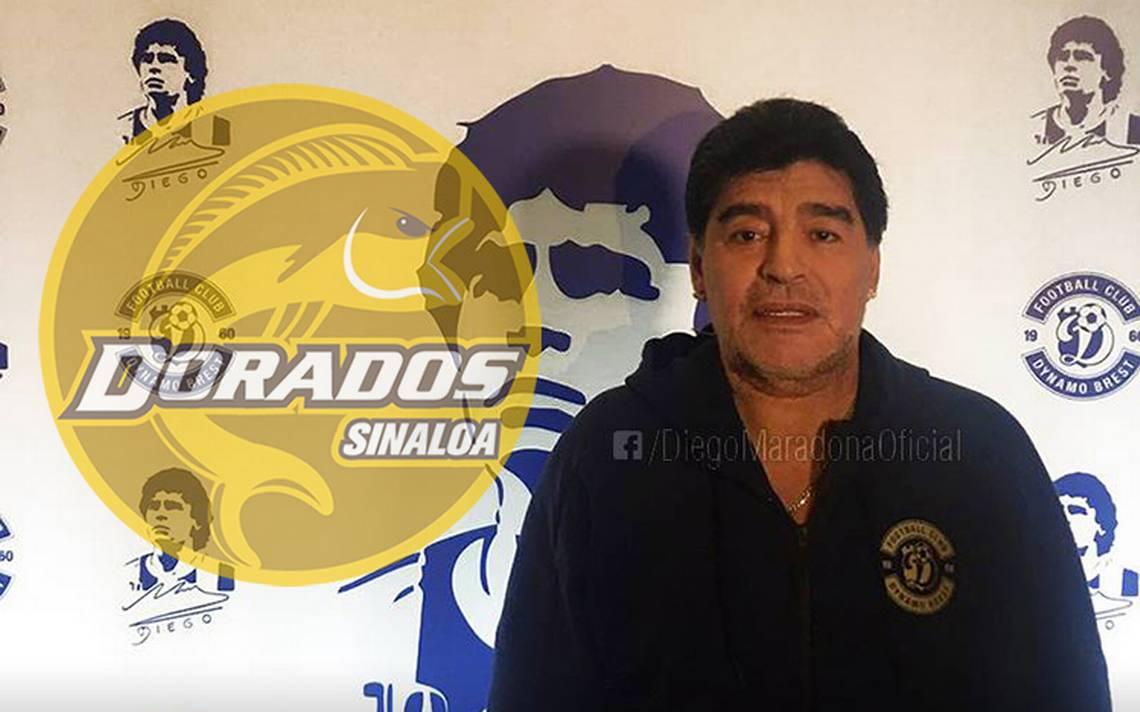Dorados Image: Diego Maradona Es Nuevo Entrenador De Dorados