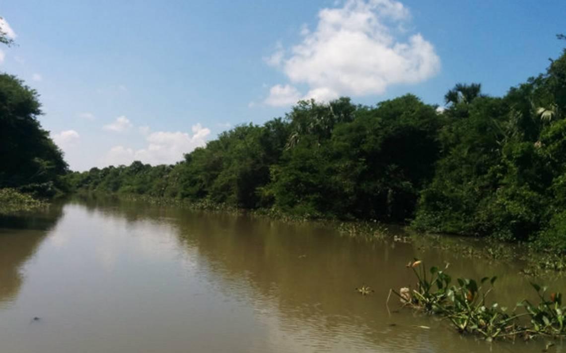 pantanos-centla-1.jpg
