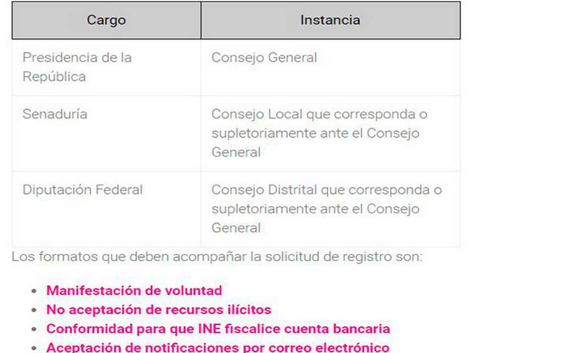 registro_independientes_ine.jpg