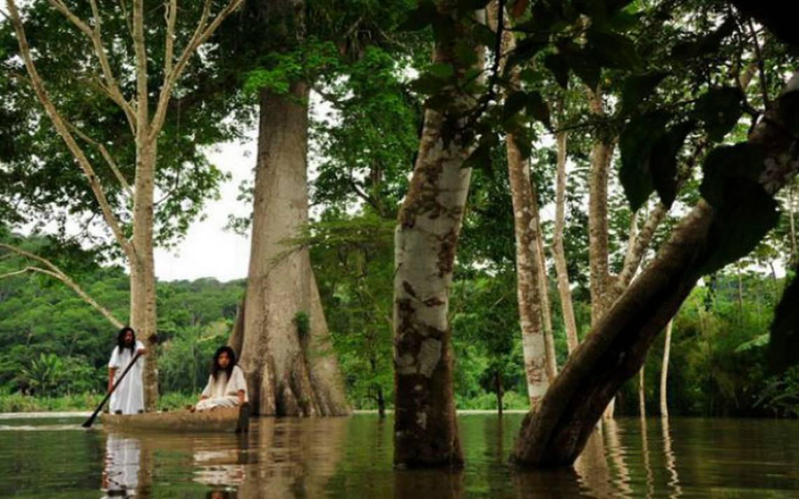 Selva-lacandona-chiapas.jpg