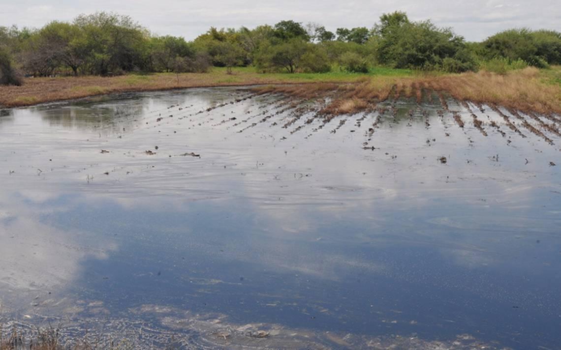 Tamaulipas2.jpg
