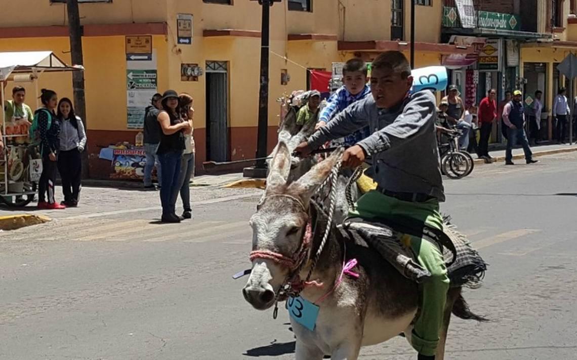 carrera de burros 4.jpg