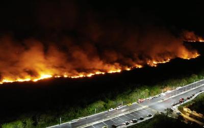 Resultado de imagen para Incendio consume 200 hectáreas de manglares en Campeche