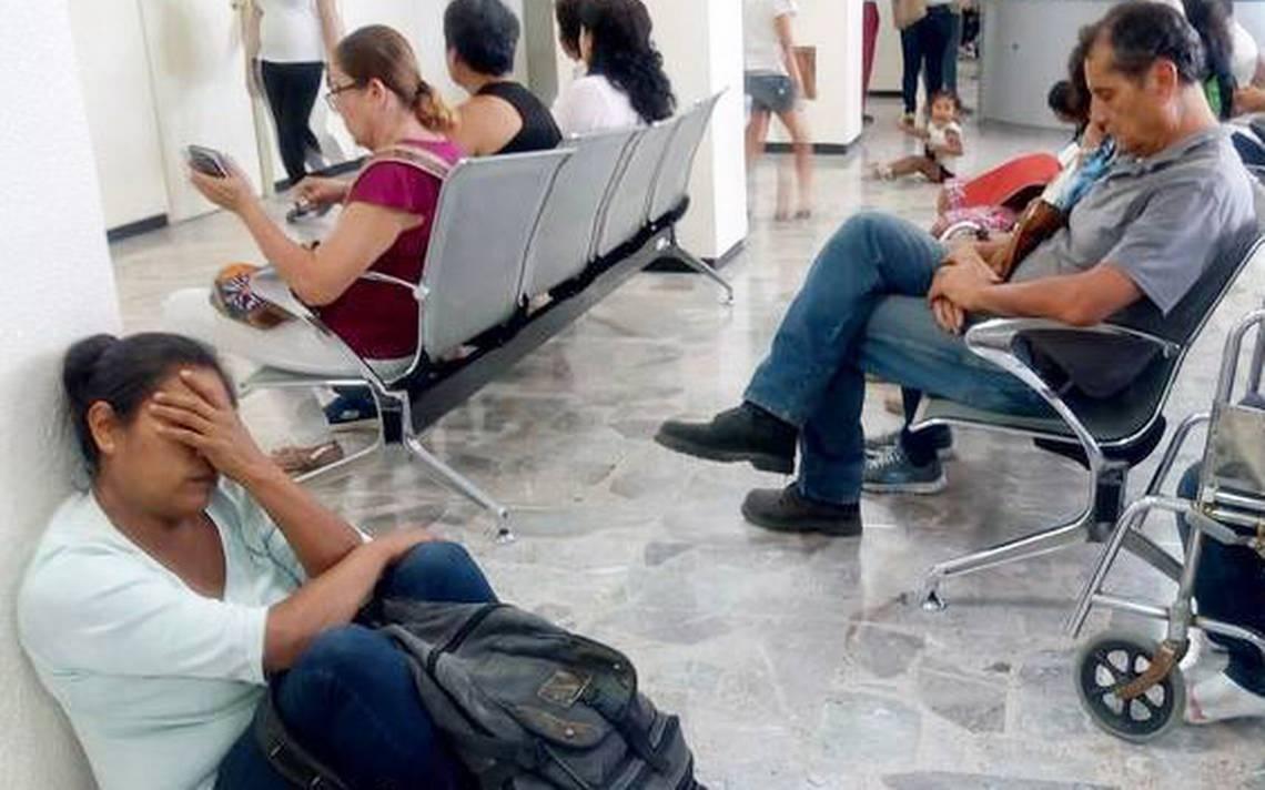 CEDH de Jalisco suma más quejas por dengue - El Sol de Salamanca